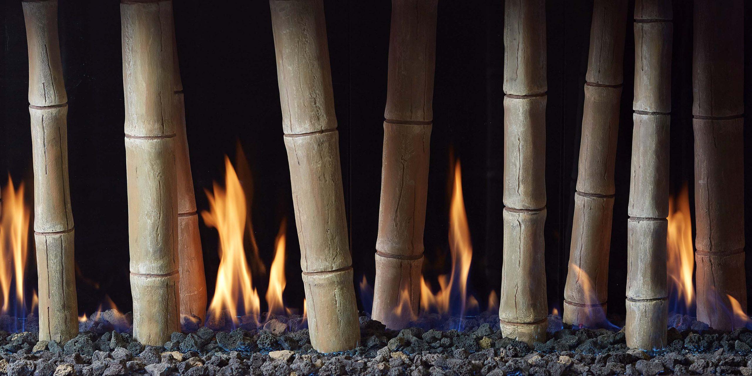 Bamboo - 20